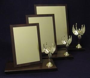 Awards Set 2 Thumbnail