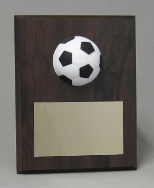 Sports ball plaques Thumbnail